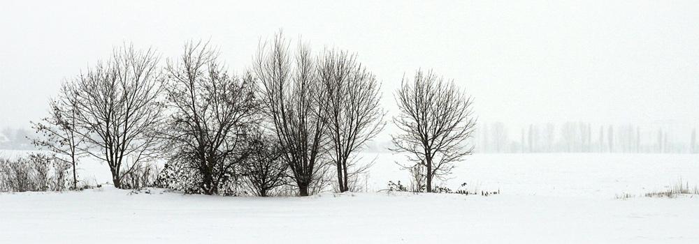 weißes Bild einer Winterlandschaft